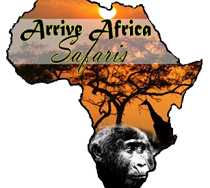 Arrive Africa Safaris